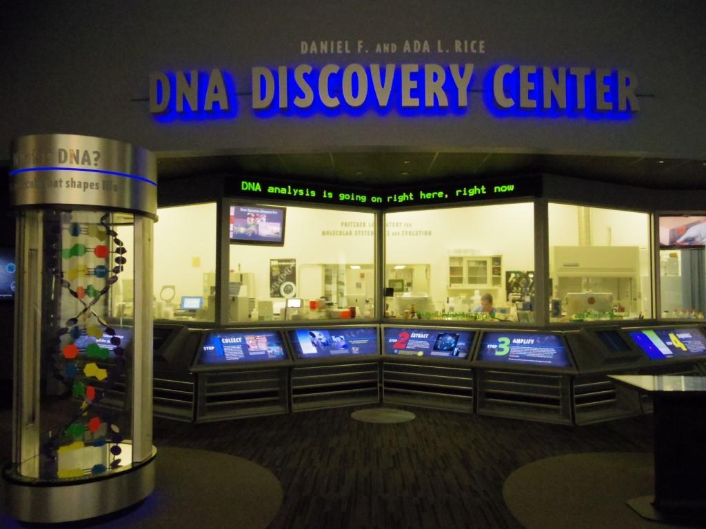 化石になどのDNAを調べている研究者のラボがガラス越しに見える仕様